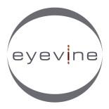 Eyevine Logo 2013 (Custom)
